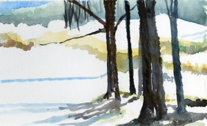 Winter scene in the Cooperstown, NY area